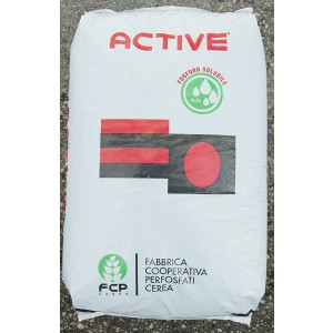 CONCIME POTASSICO ACTIVE FOCUS 12/28 IN SACCO DA 25 KG